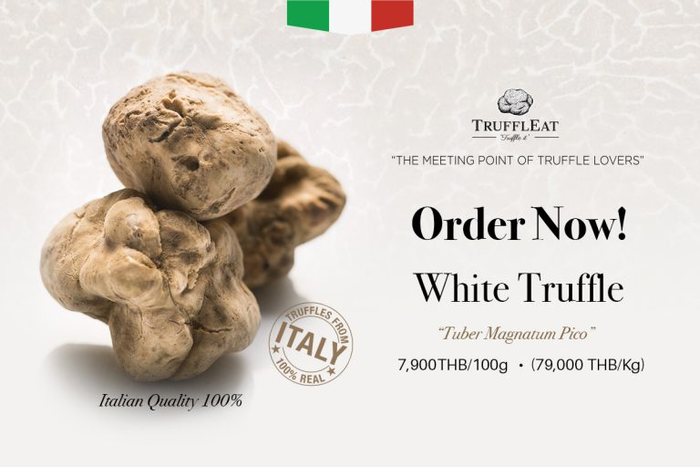 HURRY-UP! THE FINEST FRESH WHITE TRUFFLES FROM ITALY. ONLY LIMITED AMOUNT AVAILABLE! BUY NOW!